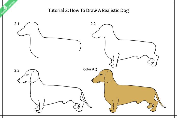 چگونه یک سگ واقعی بکشیم