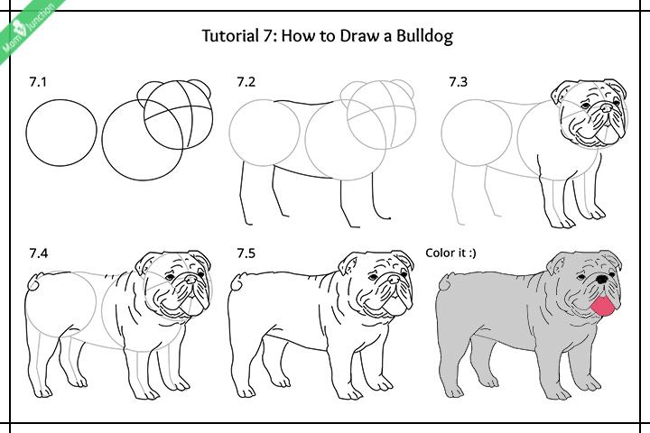 چگونه یک سگ دالماسین ترسیم کنید