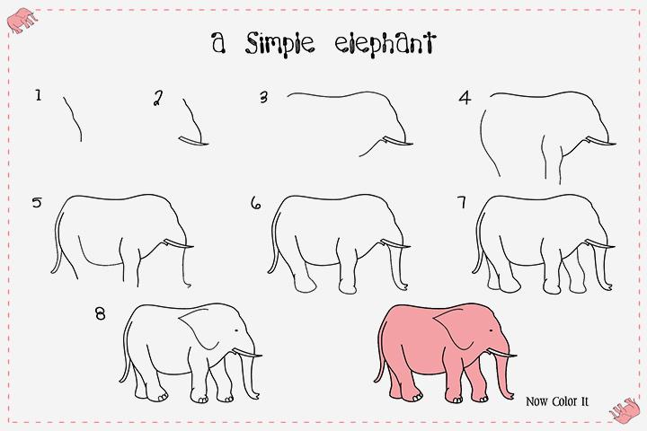 فیل ساده