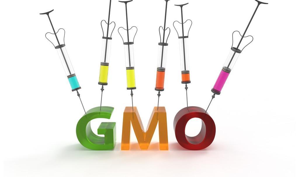 غذاهای «اصلاح ژنتیکی شده» یا تراریخته دقیقا چیست؟