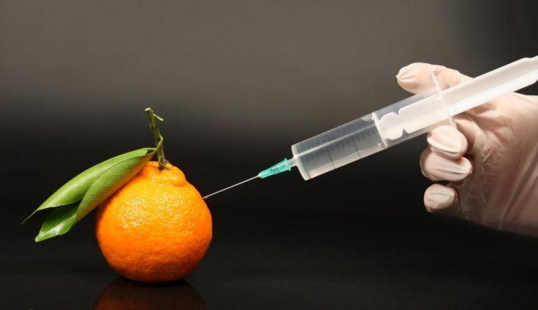 آیا غذاهای اصلاح شده ژنتیکی (تراریخته) برای کودک بی خطر است؟