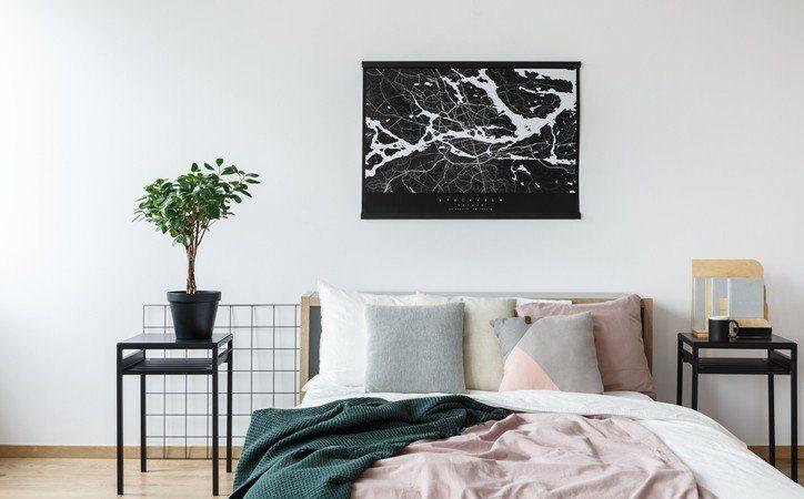 10 مورد از بهترین گیاهان برای نگهداری در اتاق خواب