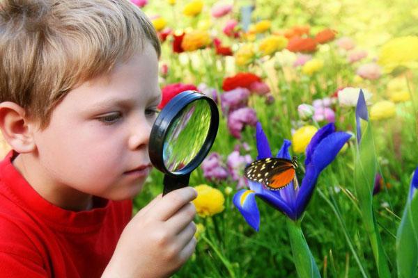 درباره خلاقیت با کودکان گفتگو کنید