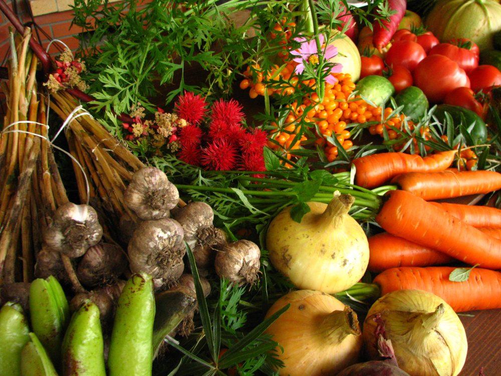 فواید محصولات ارگانیک؛ 7 دلیل برای تغییر هر چه سریعتر رژیم غذاییتان به محصولات ارگانیک