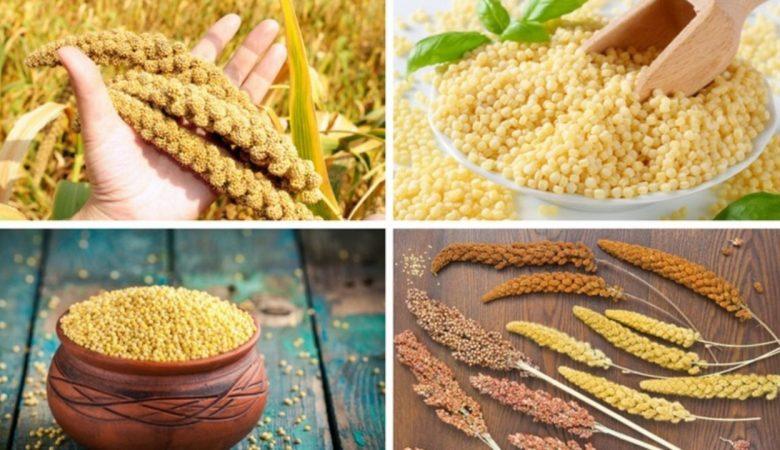 6 دلیل علمی برای اثبات مفید بودن مصرف روزانه ارزن (گندمیان) برای بدن