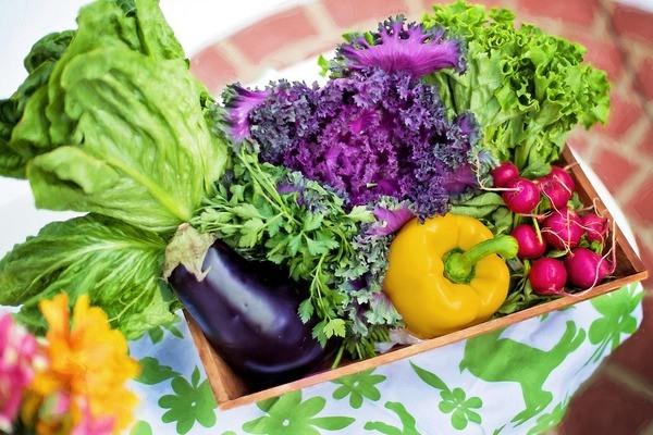7 دلیل برای تغییر به یک رژیم غذایی کاملاً ارگانیک