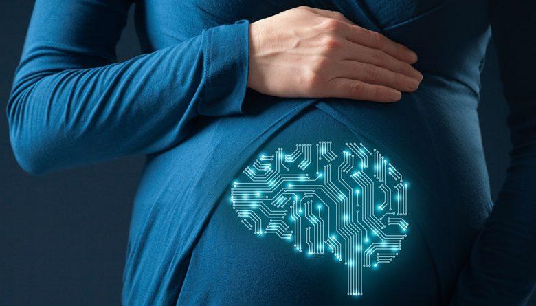 تقویت هوش جنین