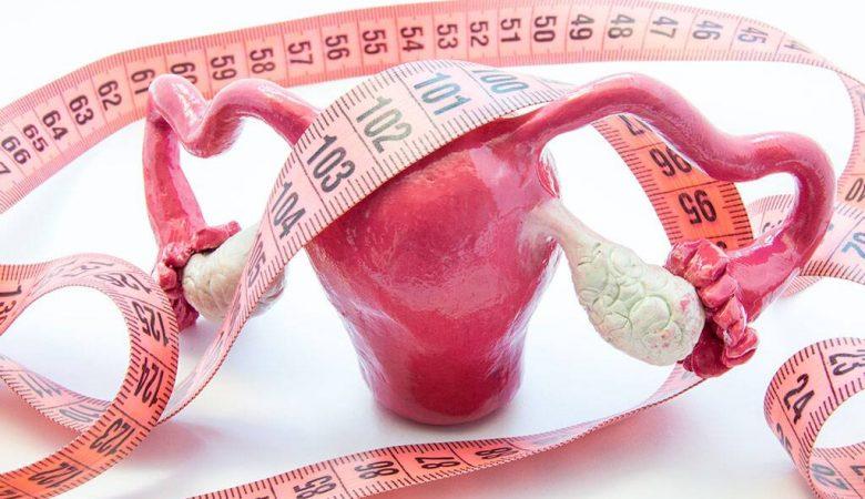 آیا اندازه (سایز) تخمدان برای باردار شدن مهم است؟