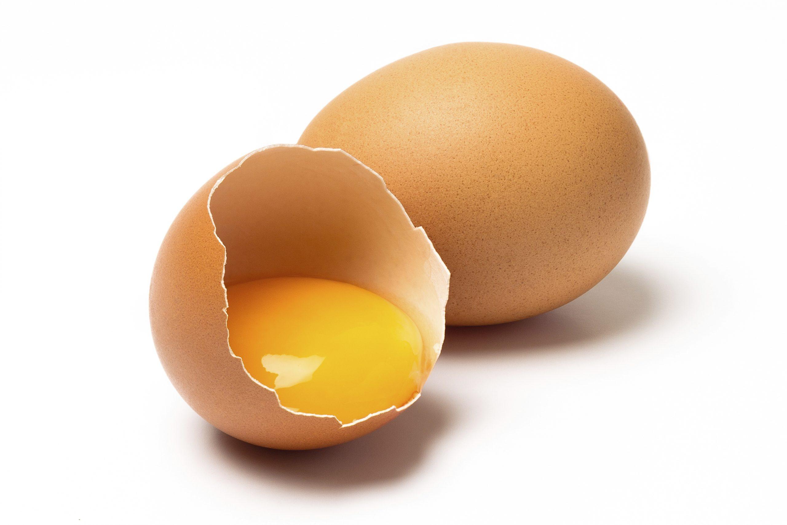 بهبود سریع زخم با تخم مرغ